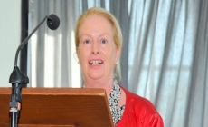 Ms Christine Flood - Senior Executive, Wicklow County Council